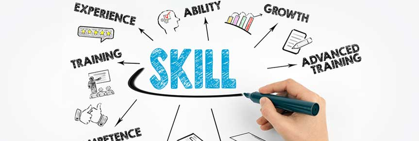 What skills does an LSE curriculum provide?